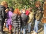 Secret Signals Kids Workshop Elfenmodder