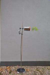 Clynoscope II