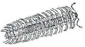 Schermafbeelding 2013-10-10 om 12.47.11