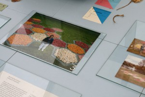 Fragment tentoonstelling Orangerie