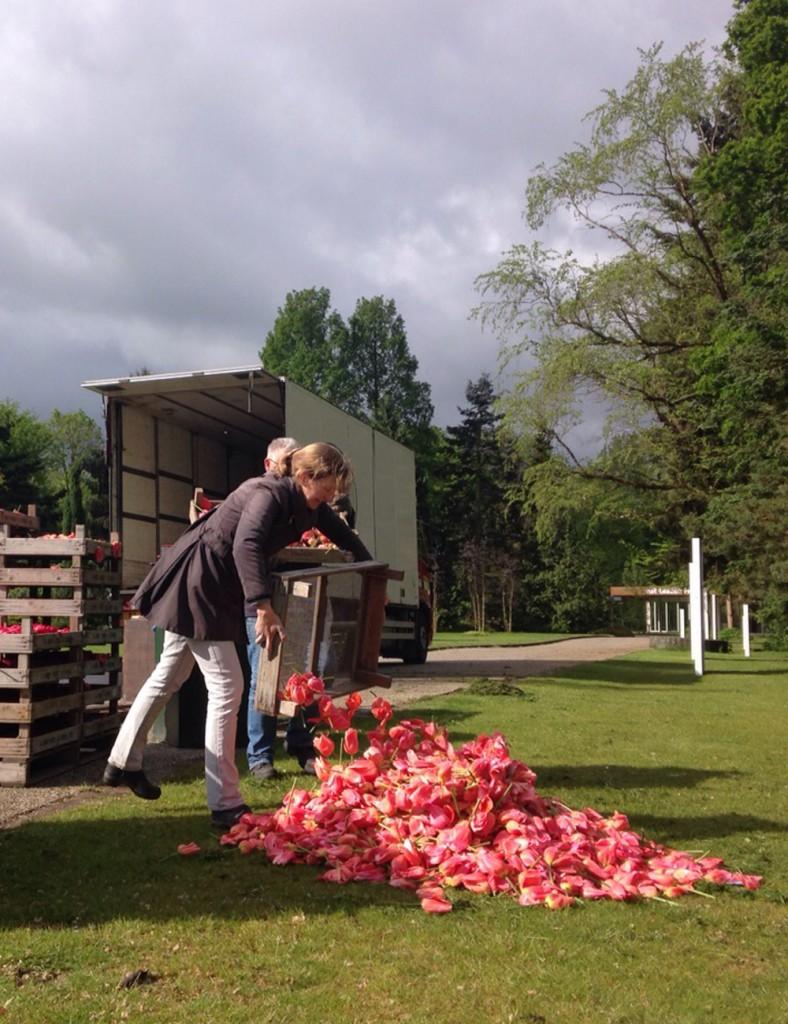 Installatie gekopte tulpen in Amstelpark