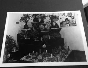 Inzending van de VU Hortus voor de Floriade 1972, fotoalbum van Art Vogel