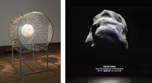 Exhibition Radiant Matter