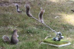communicatiebeeld_machine-wilderness