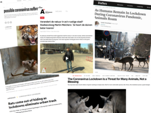 Open call: Multispecies Storytelling
